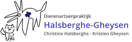 DAP Halsberghe Gheysen Logo